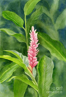 Pink Ginger With Leafy Background Print by Sharon Freeman