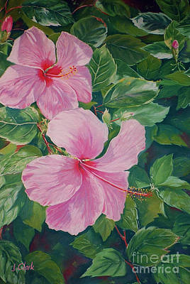 Hibiscus Painting - Pink Hibiscus by John Clark
