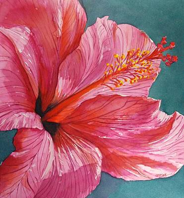 Painting - Pink Hibiscus Looking Up 2014 by Donna Pierce-Clark