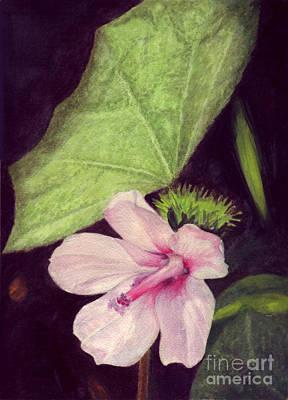 Pink Hibiscus Original by Mukta Gupta
