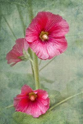 Hollyhock Digital Art - Pink Hollyhocks by Lena Auxier