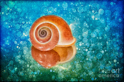 Shell Photograph - Pink Land Snail Shell And Texture by Mimi Ditchie
