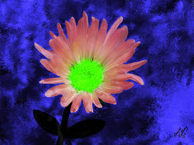 Flower Painting - Pink Mojave Aster by Bruce Nutting