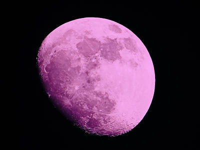 Man In The Moon Photograph - Pink Moon by Tom Gari Gallery-Three-Photography