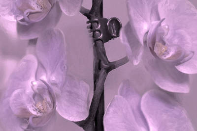 Pink Orchids On Branch Original by Toppart Sweden