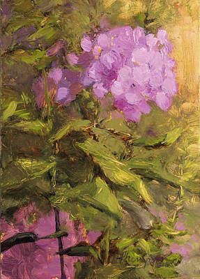 Phlox Painting - Pink Phlox by Tracie Thompson