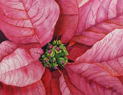 Painting - Pink Poinsettia 2014 by Donna Pierce-Clark