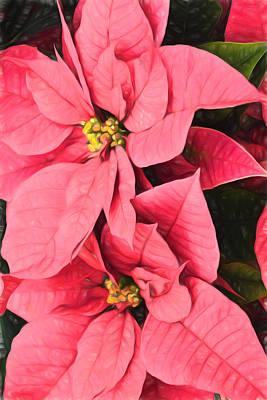 Vivacious Digital Art - Pink Poinsettias Painting - Christmas Impressions by Georgia Mizuleva