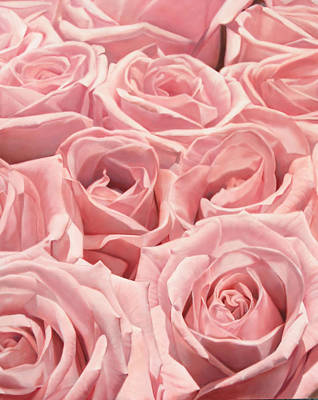 Painting - Pink Roses 152 X 121cm by Thomas Darnell
