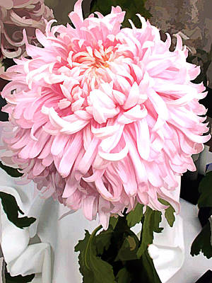 Mums Painting - Pink Shaggy Chrysanthemum by Elaine Plesser