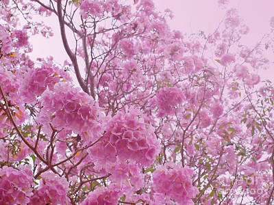 Pink Sweet Dream Feeling  Print by Sarun T
