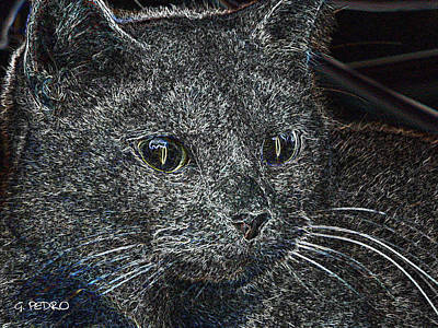 George Pedro Art Photograph - Pinky Le Chat by George Pedro