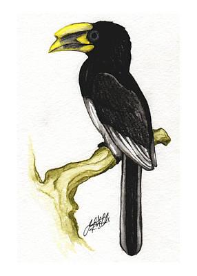Hornbill Painting - Piping Hornbill by Justin F C Miller