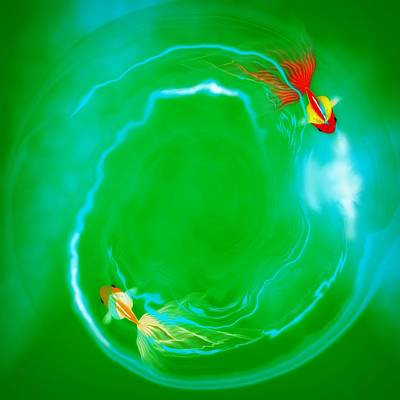 Goldfish Digital Art - Pisces by GuoJun Pan