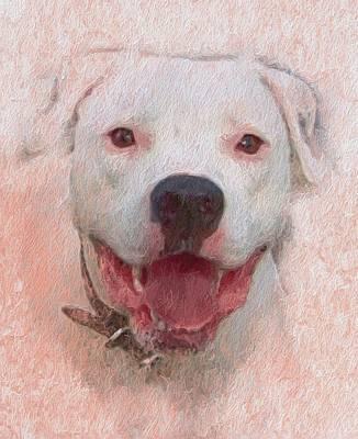 Pet Portraits Digital Art - Pit Bull by Skip Hunt
