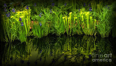 Pitcher Plant Paradise Print by Mike Nellums