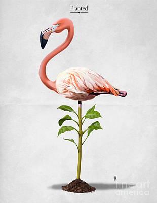 Flamingo Mixed Media - Planted by Rob Snow