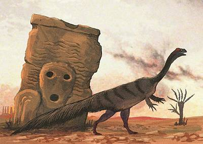 Extinct Reptile Photograph - Plateosaurus Dinosaur by Nemo Ramjet