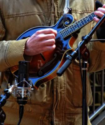 Session Musician Photograph - Playing Mandolin by Dan Sproul