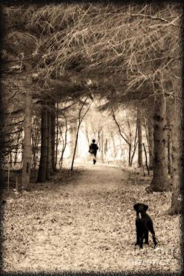 Labrador Retriever Digital Art - Please Come Back  by Cathy  Beharriell