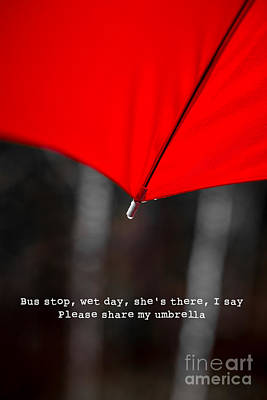 Bus Photograph - Please Share My Umbrella by Edward Fielding