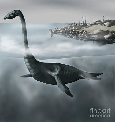 Triassic Photograph - Plesiosaur by Spencer Sutton