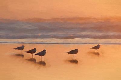Plovers Reflecting Print by John K Woodruff