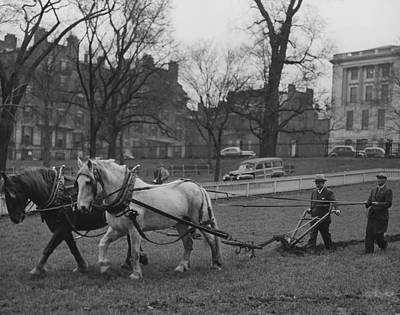 Horse-drawn Plow Photograph - Plowing Boston Common For The Victory by Everett