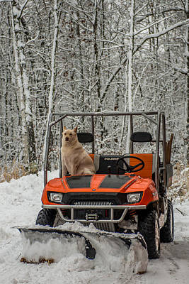 Plowing Companion Print by Paul Freidlund