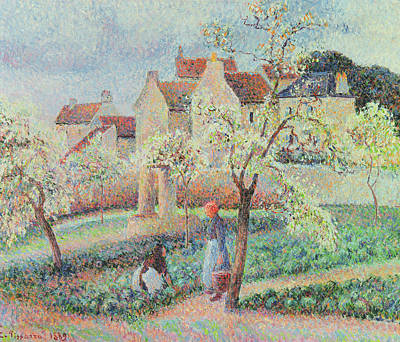 Chimneys. Flowers Painting - Plum Trees In Flower by Camille Pissarro