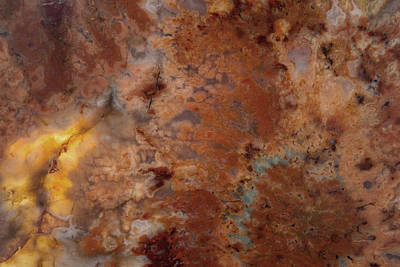 Nature Abstract Mixed Media - Plume Explosion by Leland D Howard