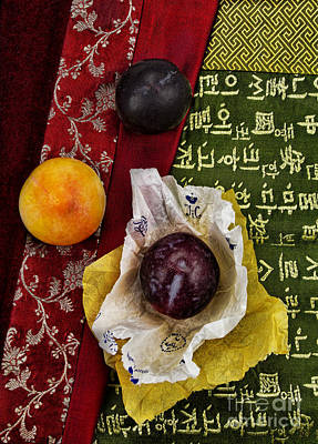 Plums Print by Elena Nosyreva