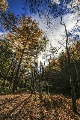 Pocono Mountain Trails Print by Creative Mind Photography
