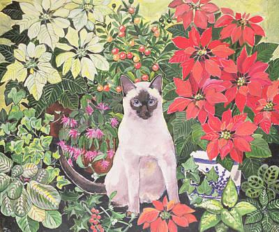 Garden Flowers Photograph - Poinsettias by Hilary Jones
