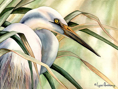 Egret Painting - Poise by Lyse Anthony