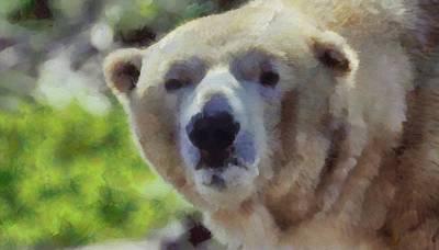 Bear Mixed Media - Polar Bear  by Dan Sproul