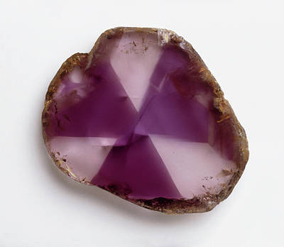 Amethyst Photograph - Polished Amethyst (quartz) by Dorling Kindersley/uig