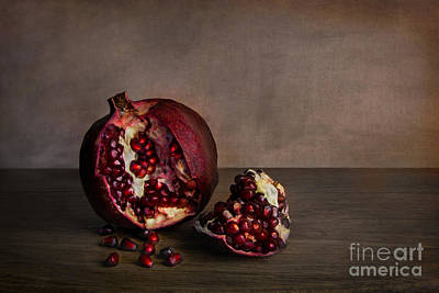 Pomegranate Print by Elena Nosyreva