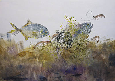 Pompano And Shrimp Print by Nancy Gorr