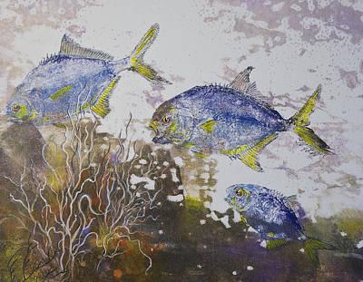 Pompano Trio Print by Nancy Gorr