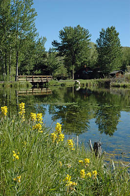 Pond And Bridge At Virginia City Montana Print by Bruce Gourley
