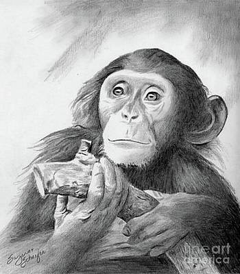 Ape Drawing - Pondering Chimpanzee by Suzanne Schaefer