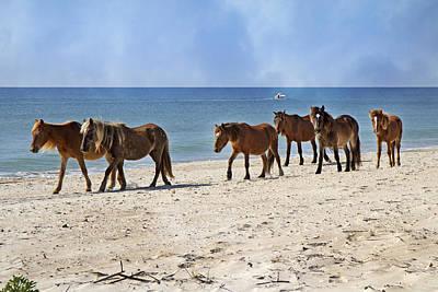 Pony Procession  Print by Betsy Knapp