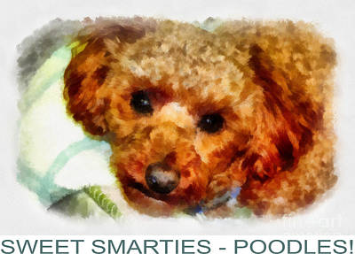 Poodle Poster Original by Betsy Cotton