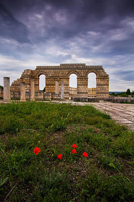 Medieval Temple Photograph - Poppies In The Ruins by Eti Reid