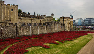 Citylife Photograph - Poppies Tower Of London by Martin Newman