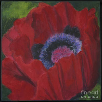 Jana Painting - Poppy 2 by Jana R  Johnson