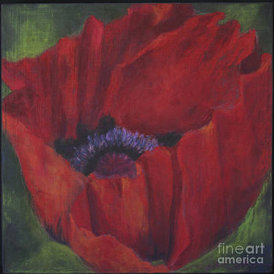Jana Painting - Poppy 3 by Jana R  Johnson