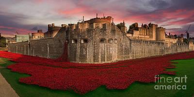 Tower Of London Digital Art - Poppy Sea  by J Biggadike