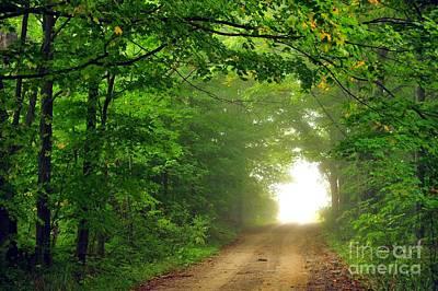 Road Photograph - Portal by Terri Gostola